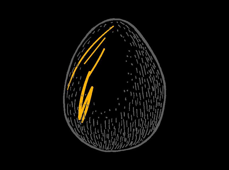 egg-safety