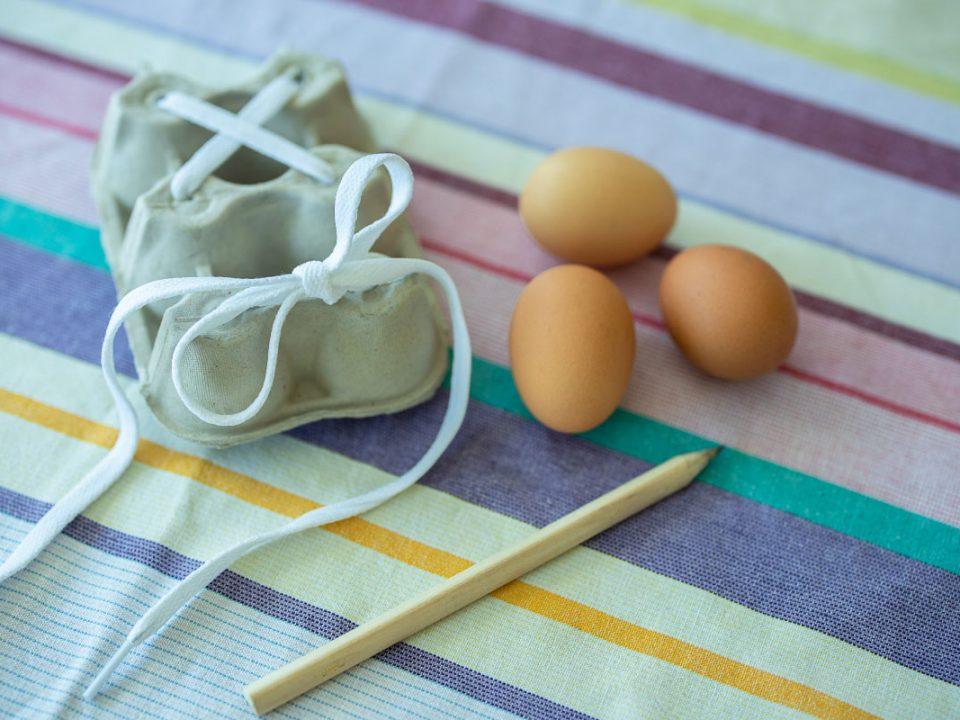 TopLay |Egg Carton Craft | Shoelaces